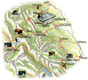 Bucovina Map - Arbore Church
