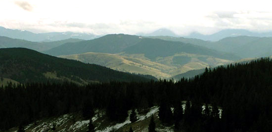 Bucovina Mountains