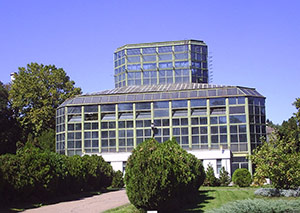 Botanical Garden, Bucharest