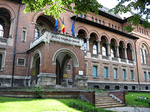 Museum of the Romanian Peasant, Bucharest