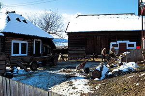 A traditional farmyard - Bucovina